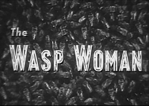 wasp woman title bees